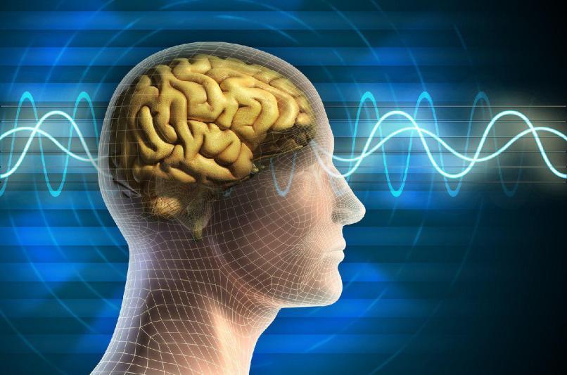 ایران جزء 20 کشور فعال در زمینه تحقیقات جنبه های الکتریکی مغز است