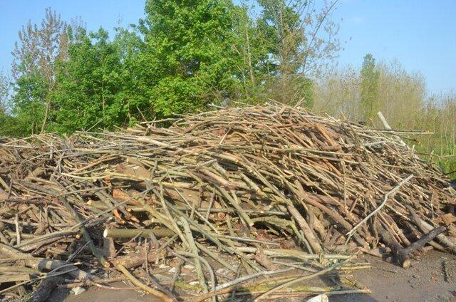کشف 24 تن چوب جنگلی قاچاق در آستانه اشرفیه