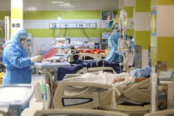 شناسایی 16596 بیمار نو کرونا در کشور ، 146 تن دیگر جان باختند